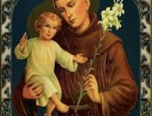 Feast Day of St Anthony
